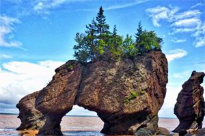 15 Lengkungan Batu Laut menakjubkan, Hopewell-Rocks