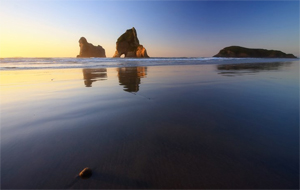 15 Lengkungan Batu Laut menakjubkan, Wharariki-Beach